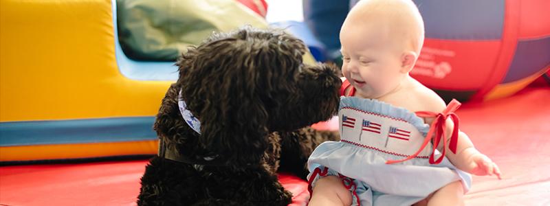 Atticus es un perro de terapia asistida por mascotas que trabaja con la paciente Hattie.