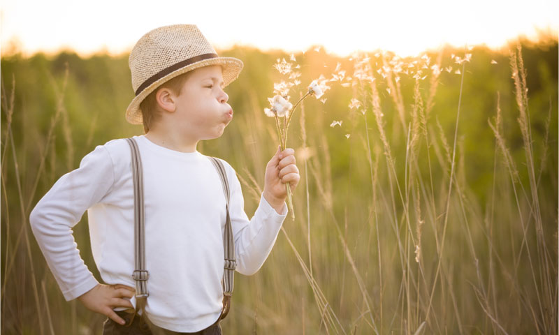 Boy in a field blowing flowers