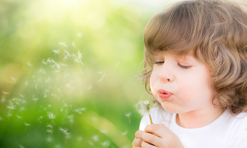 Child blowing dandelion outdoors in spring