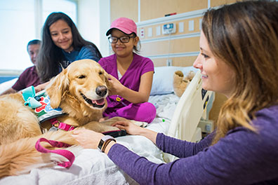 pet therapy dog visiting young patient in her room