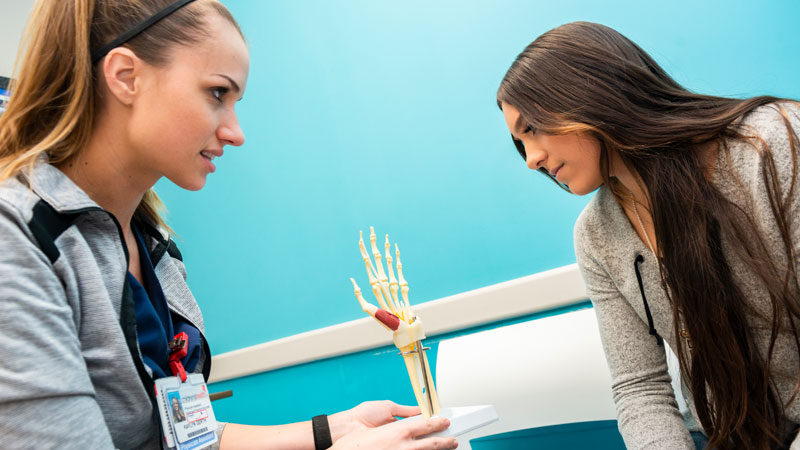 hand and peripheral nerve provider and patient look at hand skeletal model
